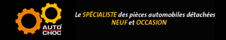 Des pièces détachées pour Renault Scénic sont à retrouver sur autochoc.fr